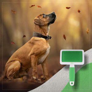 Wahl Animal Slicker Brush XL